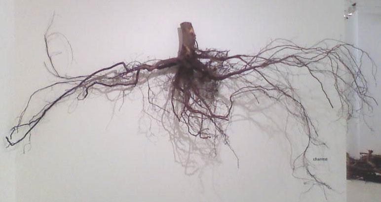 Les racines ont des feuilles Pascal Cribier