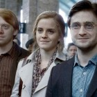 harry-potter-une-suite-possible-apres-le-realisateur