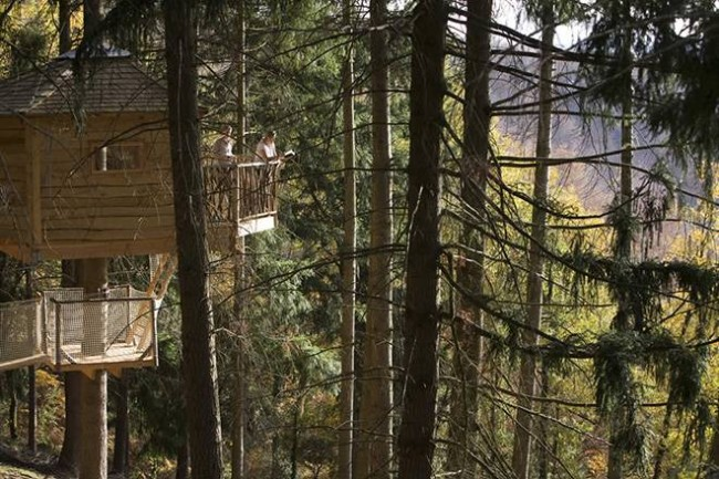 cabanes-als-arbres-en-espagne