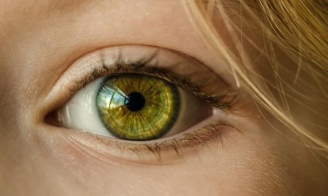 Les plus beaux yeux du monde h2 blog - Les plus beaux rideaux du monde ...
